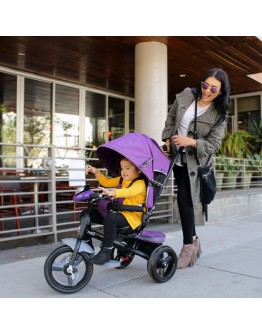 Evezo Maks 4-in-1 Stroller Tricycle with full canopy